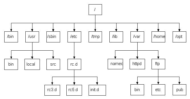 Linux目录结构及详细介绍